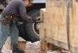 Nicola LogWorks Builds a Custom Ponderosa Pine Cabin
