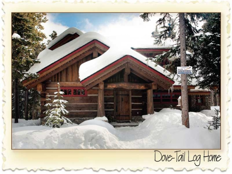 dove tail log home
