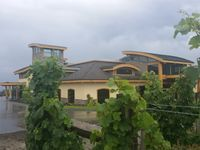 Grizzli Winery Kelowna BC