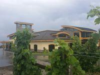 Grizzli Winery Kelowna BC