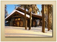 Dovetail log home - Apex